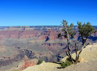 a view down the edge of the Grand Canyon from the South Rim
