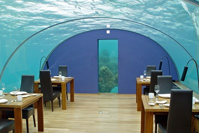 The Ithaa Undersea Restaurant in the Maldives offers diners amazing overhead views.