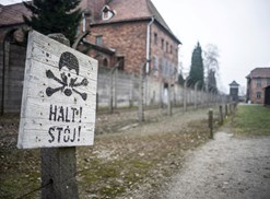 Abandoned ships lie rusting in the ocean in the Bermuda Triangle.