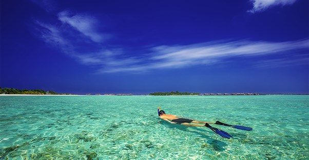 Snorkel These Locations with the Clearest Waters
