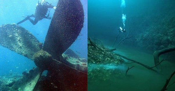 30 Hauntingly Bizarre Things in the Ocean Depths main image