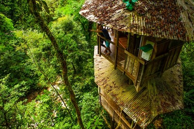 Finca Bellavista is the perfect sustainable getaway by offering housing in a treehouse.