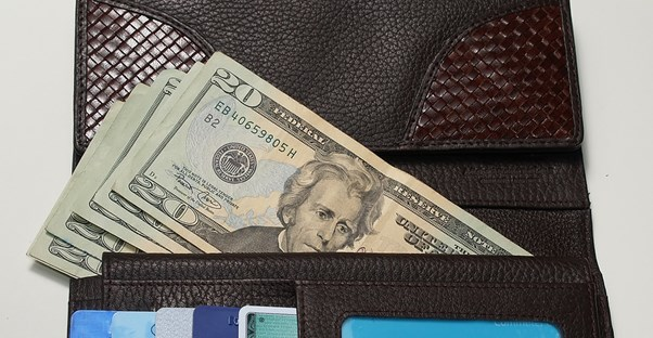 a travel wallet is filled with $20 bills